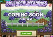 Lavender Meadows-popup