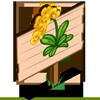 Sunburst Orchid Mastery Sign-icon