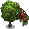 Wild Service Tree-icon
