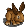 Brown Hare-icon