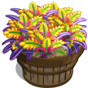 Bromeliad Bushel-icon