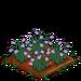 Lilac Daffy 66