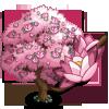 Pink Magnolia Tree-icon
