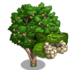 White Mulberry Tree-icon