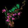 Green Broadbill-icon