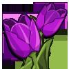 Purple Tulip-icon