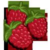 Raspberries-icon