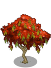 Gulmohar Tree2-icon