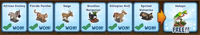 Mystery Game 165 Rewards Revealed