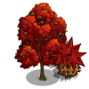 Sweet Gum Tree-icon