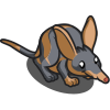 Bandicoot-icon