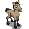 Mustang Foal-icon
