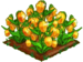 Sandersonia Flower extra100