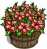 Garnet Poppy Bushel-icon