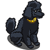 Poodle-icon