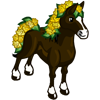 Yellow Rose Horse-icon