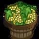 Chardonnay Bushel-icon