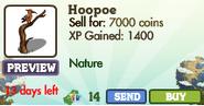 Hoopoe Market Info (April 2012)
