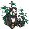 Pandas-icon