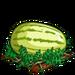 Super Yellow Melon extra100