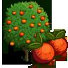 Blood Orange Tree-icon.png