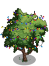 Amherstia Tree5-icon