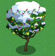 Guava snow