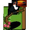 Toucan-icon