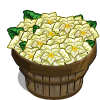 White Poinsettia Bushel-icon