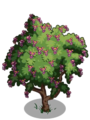 Amherstia Tree1-icon.png