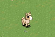 Cream Mini Foal