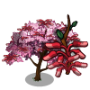 Eastern Redbud Tree-icon