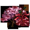 Eastern Redbud Tree-icon
