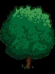 Walnut1-icon