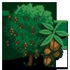 WalnutTree-icon