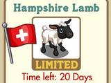 Hampshire Lamb