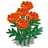 Red Marigolds-icon