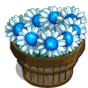 White Dwarf Sunflower Bushel-icon