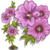 Pink Hollyhock Full Bloom-icon
