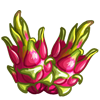 Pitaya Fruit-icon