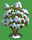 Pomegranate tree under snow and lights