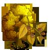 Sweet Birch Tree-icon