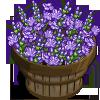 Lavender Flowers Bushel-icon