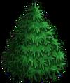 Sitka Spruce1-icon