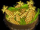 Sweet Corn (Australia)