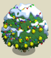 Alma Fig Tree10-icon