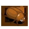 Bugs Beetle-icon