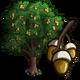 Holly Oak Tree-icon