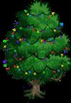 Jackfruit Tree5-icon