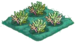 Plankton 00